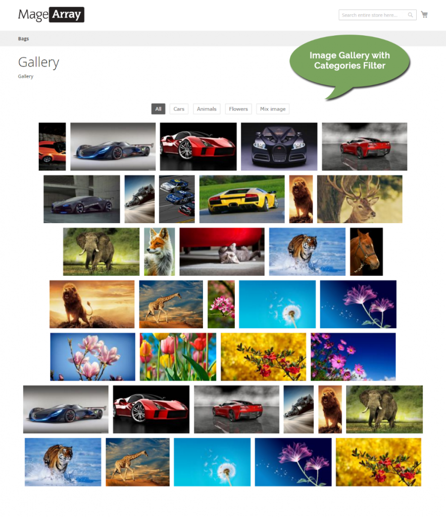 Best Image Gallery Magento 2 Extensions