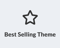 Best Selling Theme