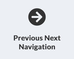 Previous Next Product Navigation