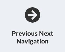 Previous Next Product Navigation