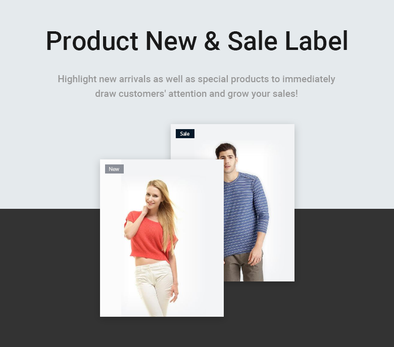 Product Label Free Magento 2 Theme