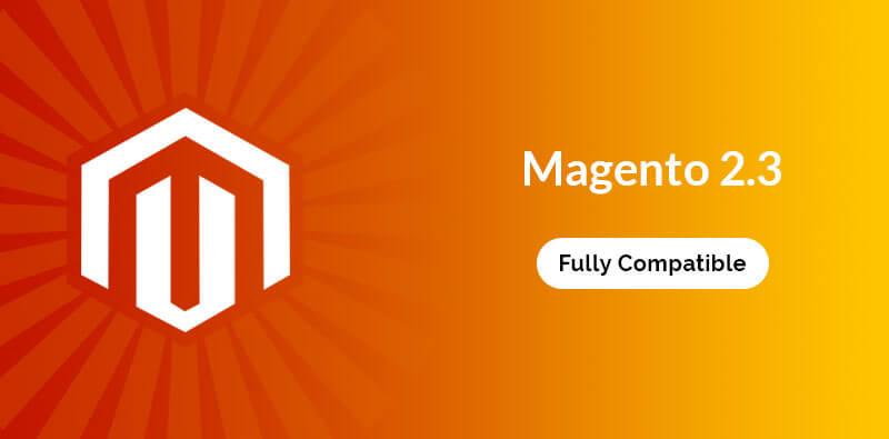 Magento 2.3 Theme