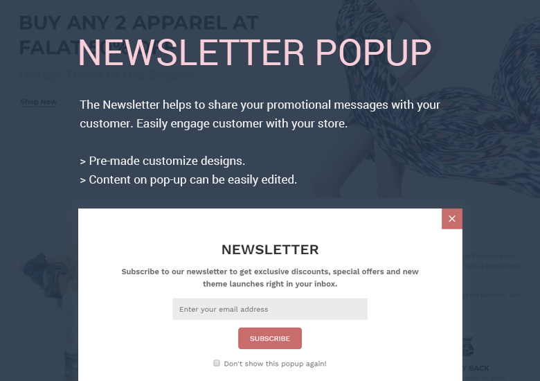 Newsletter Popup Magento 2 Theme